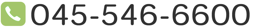045-546-6600